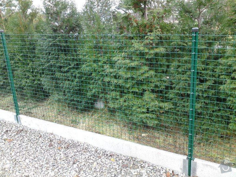 Oplocení zahrady: oploceni_ze_svarovane_site