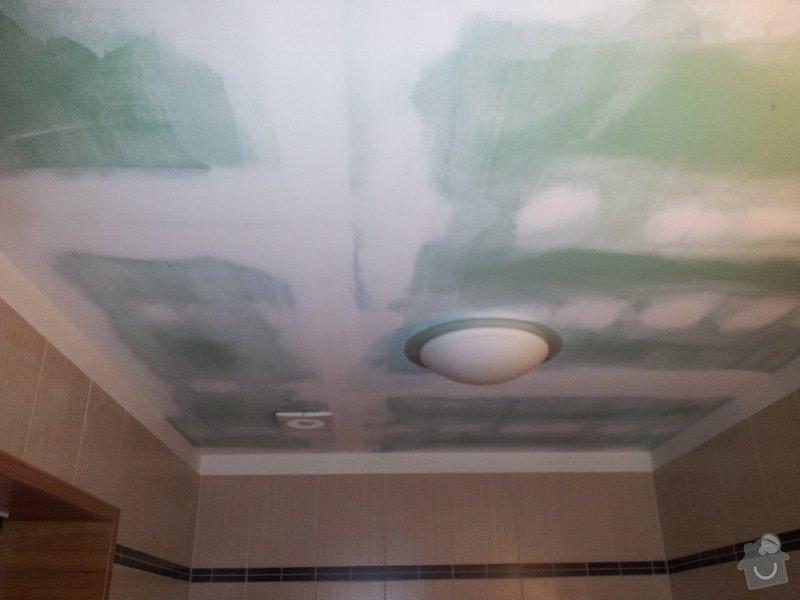 Podhled s bodovým osvětlením a zateplení stropu v soc.zařízení: 20120111_090941