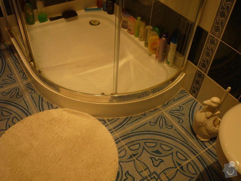Výstavba nové koupelny v rodinném domě: P1010657