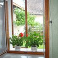 Renovace drevenych oken okno 1
