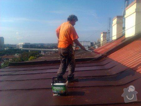 Nátěr střechy a klempířských prvků : IMAG0385