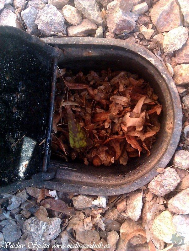 Celoroční pravidelná měsíční údržba Havlíčkovy sady Vinohrady  : IMAG0571