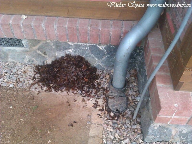 Celoroční pravidelná měsíční údržba Havlíčkovy sady Vinohrady  : IMAG0712