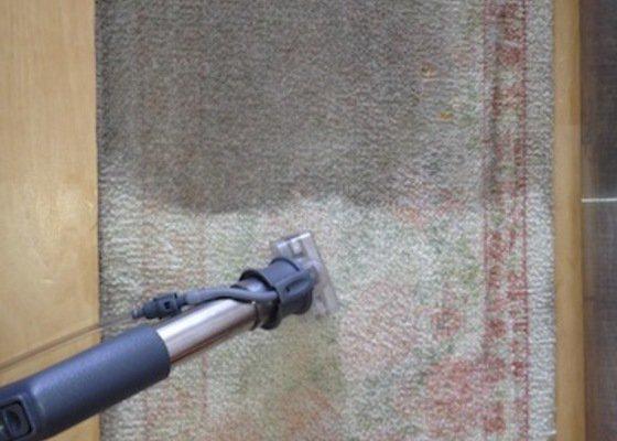Čištění koberců, čištění sedačky, čištění židlí, čištění matrace, mytí oken