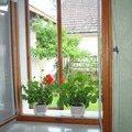 Latkove rolety na chalupu retro okno 1