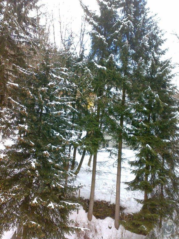 Kácení 6ti stromů mezi objekty: 20022012506