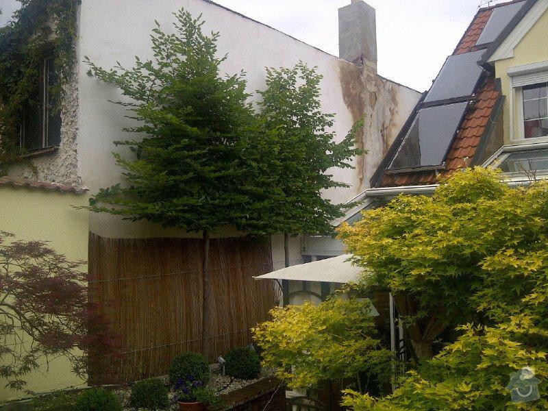 Sestříhání 8mi stromů, výška 6m: Praha-20120614-00102