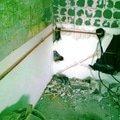 Rekonstrukce kuchyne 04062012302