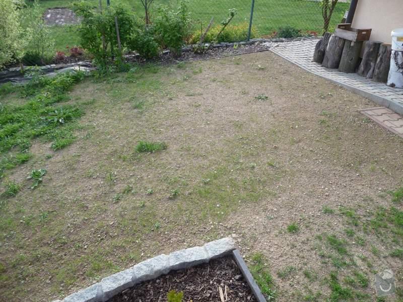 Zahrada - zatravnění pozemku: P1060812