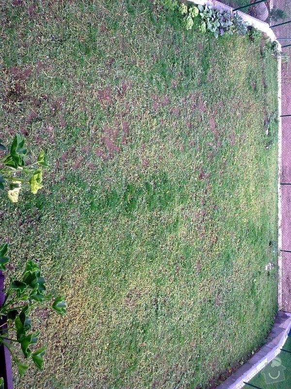 Návrh a realizace zahrady řadového RD, 100m2: Obraz0231_1_