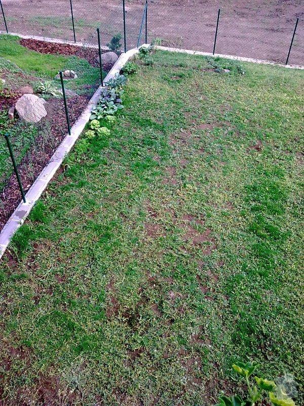 Návrh a realizace zahrady řadového RD, 100m2: Obraz0232_1_