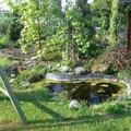 Rekonstrukce zahradniho jezirka p1470341