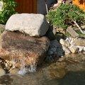 Rekonstrukce zahradniho jezirka p1470423