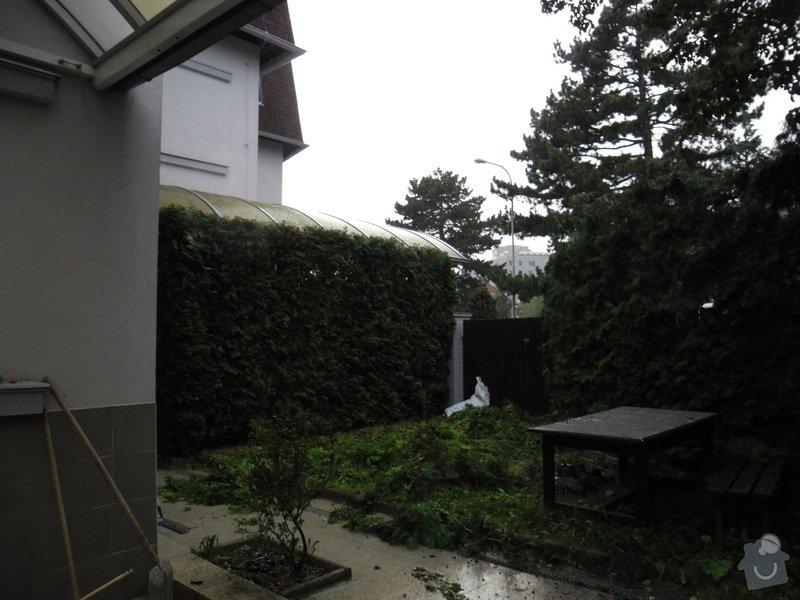 Uklid zahrady - Praha 4 - specha! 20.-22.7.2012: foto