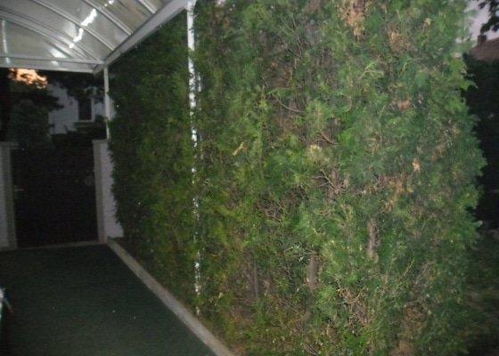 Uklid zahrady - Praha 4 - specha! 20.-22.7.2012