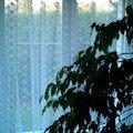 Plastova okna s montazi imag0008