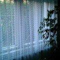 Plastova okna s montazi imag0010