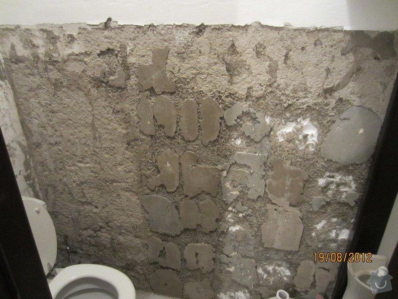 Obklady a dlažba koupelny: IMG_0102