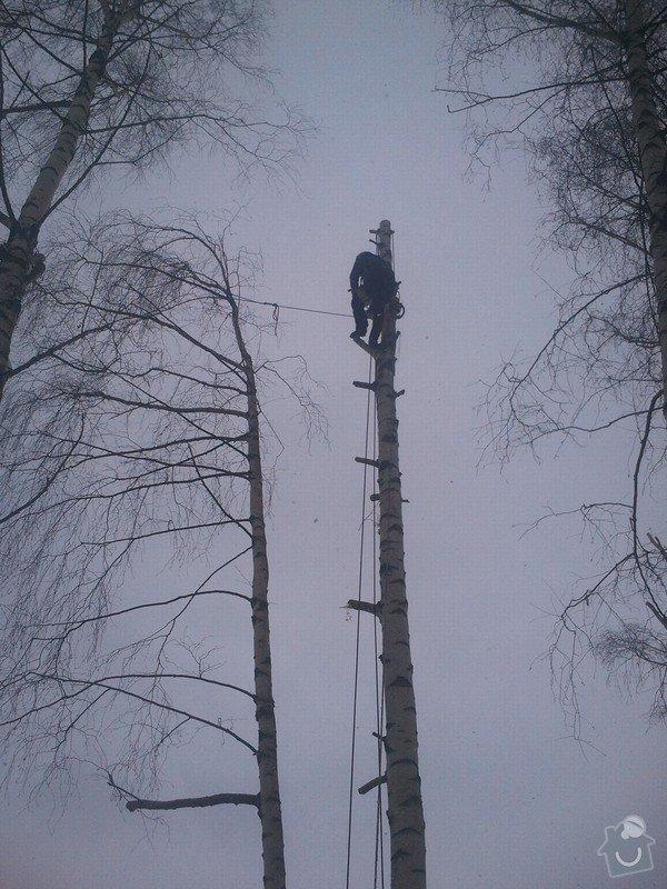 Rizikové kácení stromů: Fotografie0055