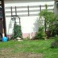 Zahradnicke sluzby komplet podzimni udrzba dsc08198