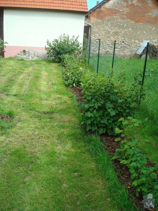 Zahradnicke sluzby- komplet podzimni udrzba : DSC08201