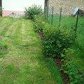 Zahradnicke sluzby komplet podzimni udrzba dsc08201