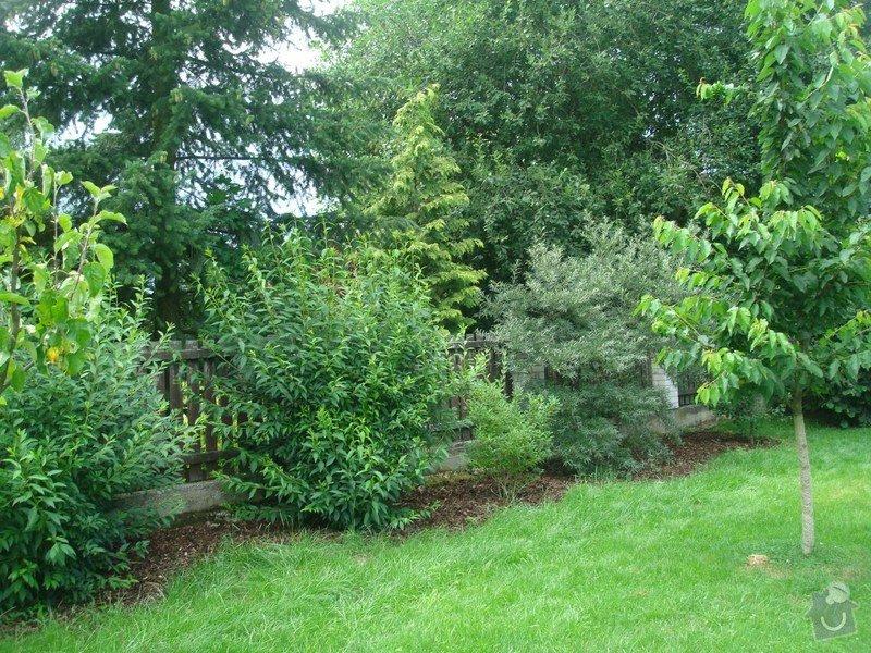 Zahradnicke sluzby- komplet podzimni udrzba : DSC08210