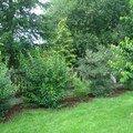 Zahradnicke sluzby komplet podzimni udrzba dsc08210