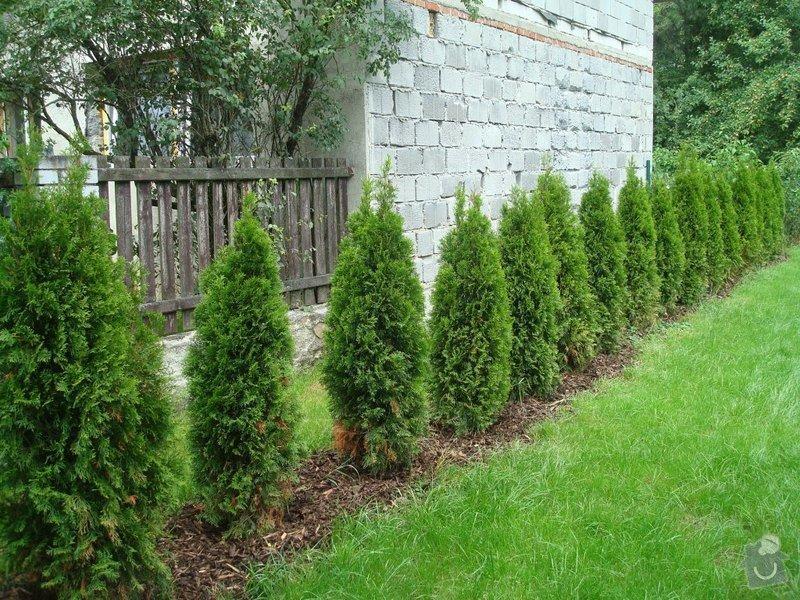 Zahradnicke sluzby- komplet podzimni udrzba : DSC08211