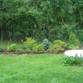 Zahradnicke sluzby komplet podzimni udrzba dsc08214