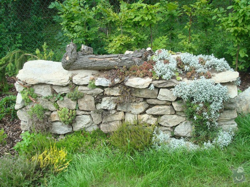 Zahradnicke sluzby- komplet podzimni udrzba : DSC08219