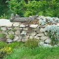 Zahradnicke sluzby komplet podzimni udrzba dsc08219