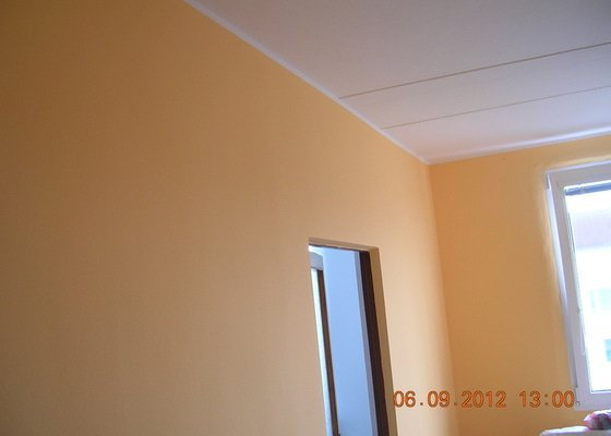 Elektroinstalace, malířské a štukatérské práce(2 pokoje)
