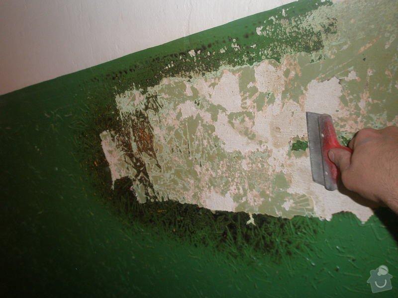 Rekonstrukce společných prostor domu na Vinohradech: P1010120