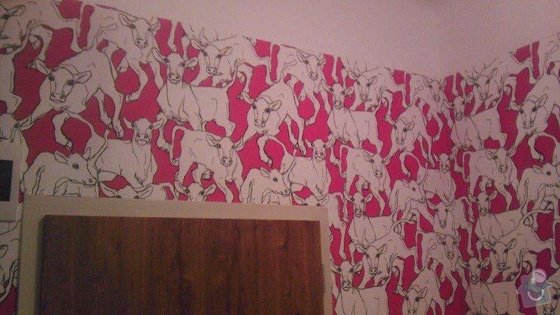 Tapetování (předsíň a jedna stěna v pokoji): IMAG0356