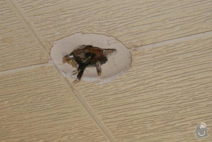 Připojení svítidel vč. přípravy, odstranění starých el. drátů v bytě: foto_2