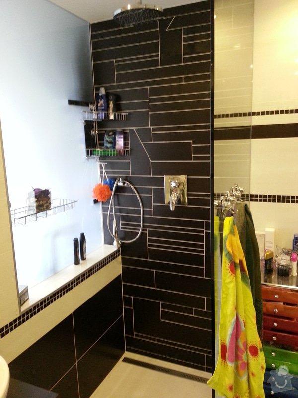 Rekonstrukce bytu: Koupelna_sprchac