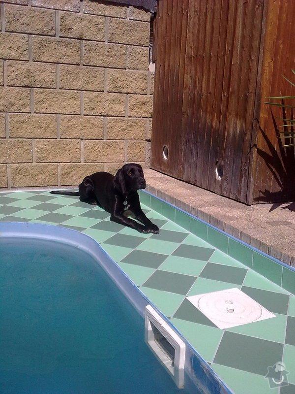 Dlažba kolem bazénu: Zahrada_019