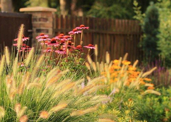 Návrh designu a realizace venkovské zahrady
