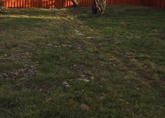 Úprava zahrady a založení nového trávníku