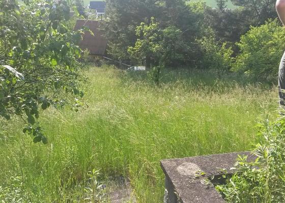 Posečení přerostlé trávy