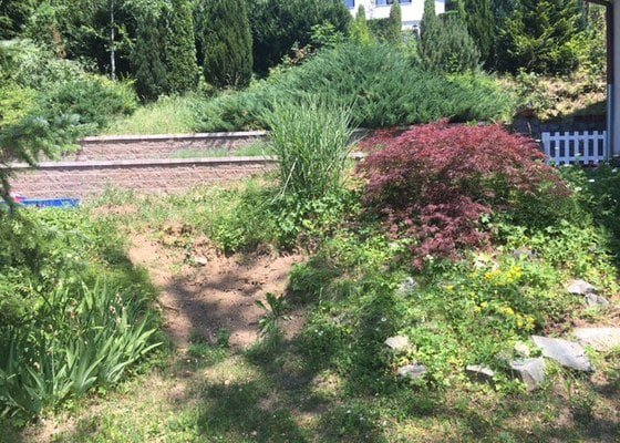 Uprava zahrady ve svahu