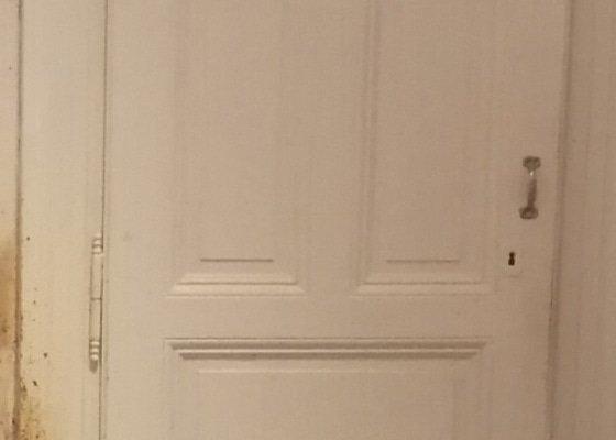 Lakýrnické práce bez opalování - repase dveří