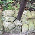 porušení betonového základu sloupku