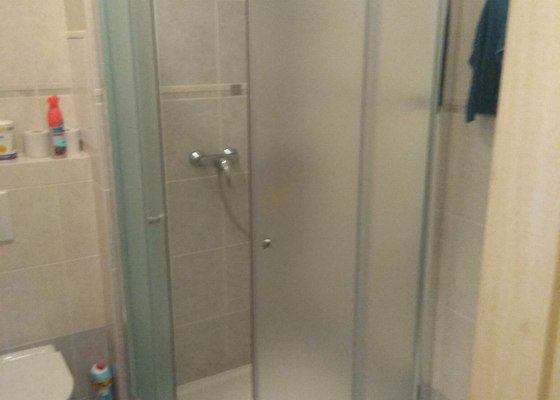 Oprava sprchového koutu, WC