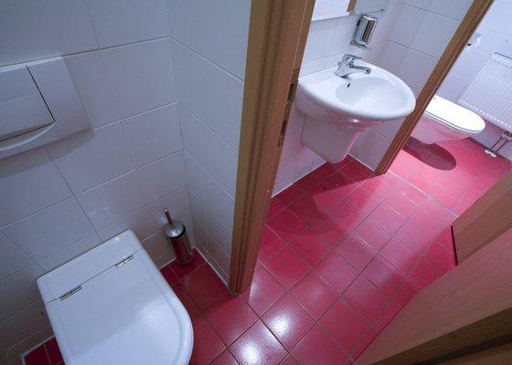 Úprava WC a sprchového koutu