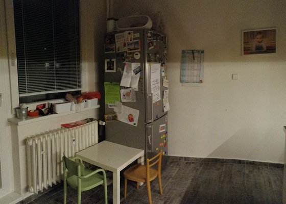 Řemeslníci - truhláři, návrh a výroba nábytku (úložné prostory a dodělávka kuchyně)