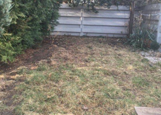 Úprava zahrady (backyard), zahradnické práce