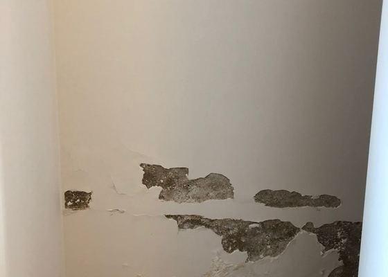 Zedník - oprava stěny