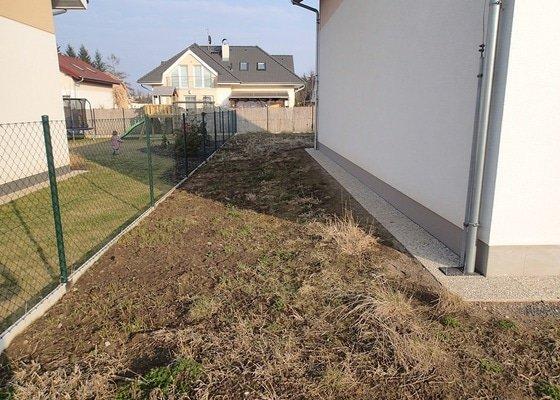 Úprava pozemku a založení trávníku